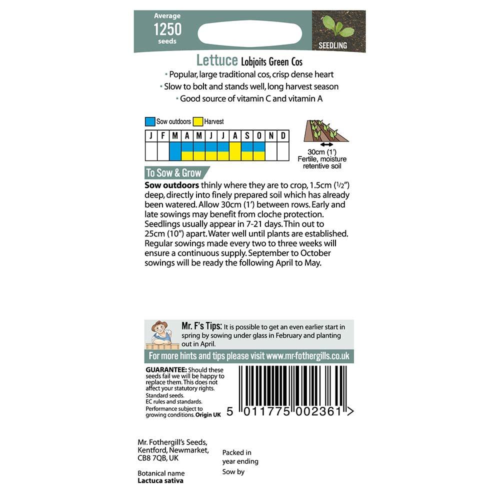Lettuce Seeds Lobjoits Green Cos Mr Fothergills Vegetable Seeds FREE UK DELIVERY